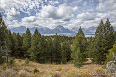L0050, Wyoming, Signature-Series, Teton Vista