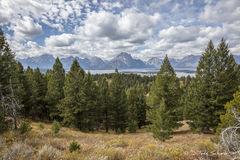 Teton Vista