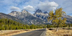 L0051, Wyoming, mountain, road, tree, Fall, yellow, blue