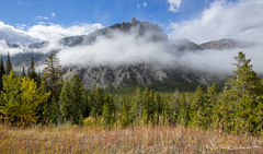 L0056, Wyoming, mountain, fog, spruce, evergreen, Fall