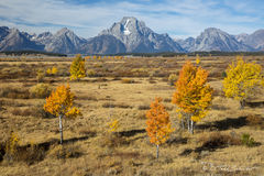 L0059, Wyoming, Signature-Series, Autumn In The Tetons