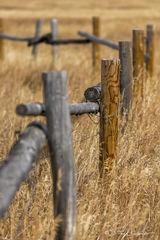 L0074, Wyoming