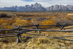 L0075, Wyoming, mountain, Fall, fence, grass, orange, yellow, weathered