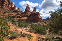 L0108, mountain, red rock, trail, path