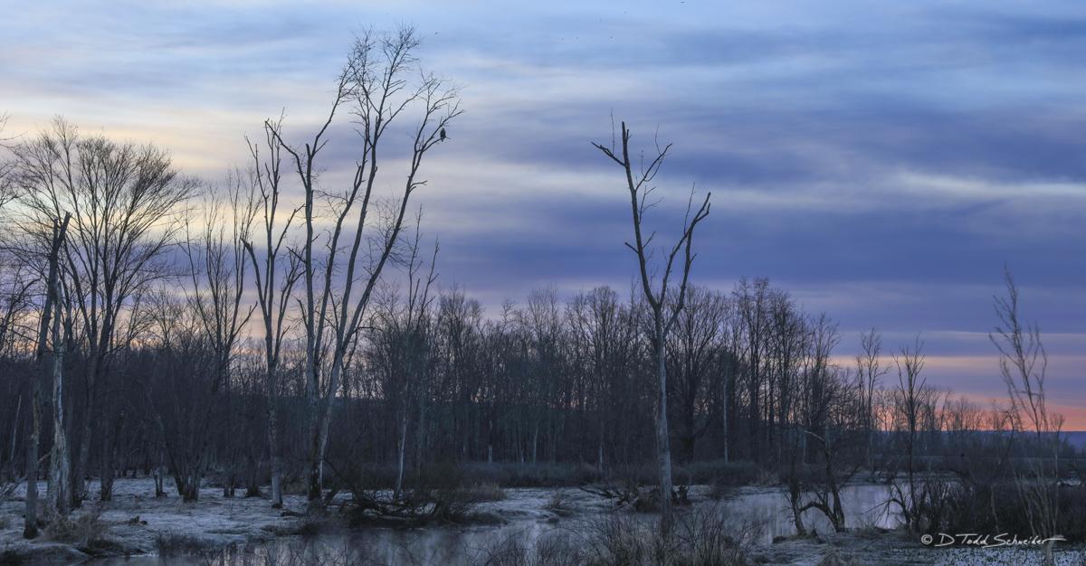 B0062, cloudy, creek, photo