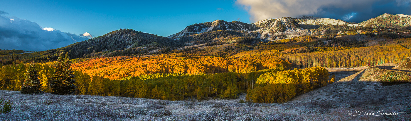 aspen, Fall, snow, Wasatch Range, Winter, Utah, photo