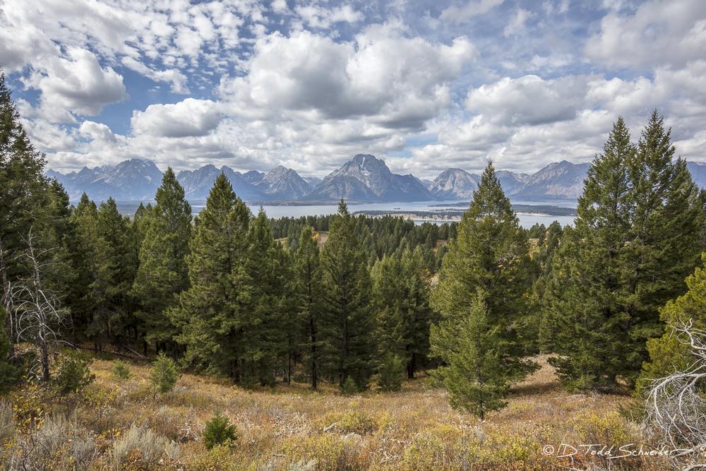 L0050, Wyoming, Signature-Series, Teton Vista, photo